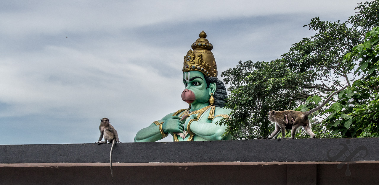 Monkey god with monkeys